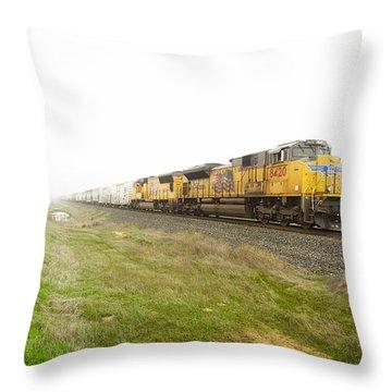 Up8420 Throw Pillow