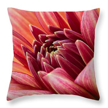 Uplifting 2 Throw Pillow by Mary Jo Allen