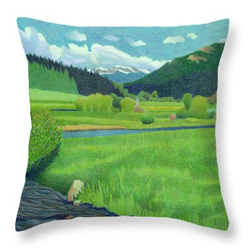 Upper Bear Creek Colorado Throw Pillow
