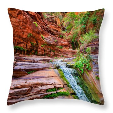 Upper Elves Chasm Cascade Throw Pillow by Inge Johnsson