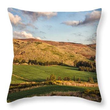 Upper Galilee Throw Pillow