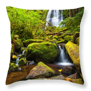 Upper Kentucky Falls - Autumn Throw Pillow by Patricia Davidson