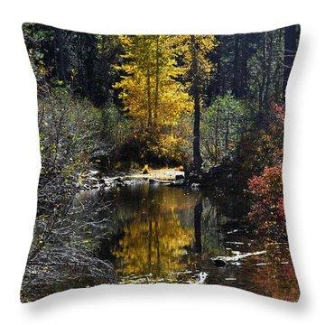 Upper Truckee River Autumn Throw Pillow