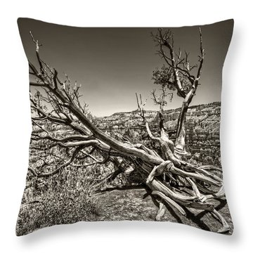 Throw Pillow featuring the photograph Uprooted - Bryce Canyon Sepia by Tammy Wetzel