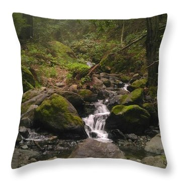 Upstream Throw Pillow by Justin Moranville