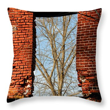 Urban Decay Throw Pillow by Olivier Le Queinec