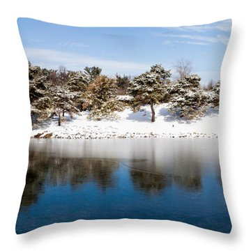 Urban Pond In Snow Throw Pillow