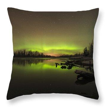 Ursa Major Throw Pillow by Ted Raynor