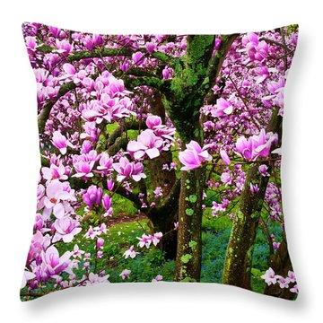 Winterthur Throw Pillows