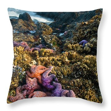 Strawberry Hills Throw Pillows