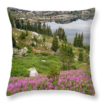 Wind River Range Throw Pillows
