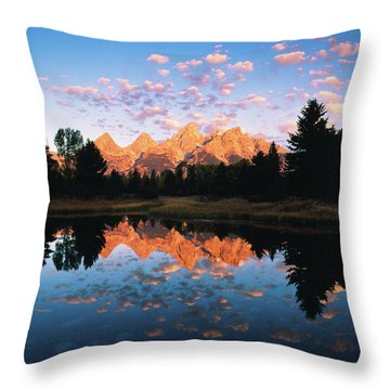 Beaver Pond Throw Pillows