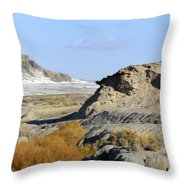 Utah Outback 42 Panoramic Throw Pillow by Mike McGlothlen