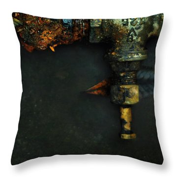 V125 And The Meaning Of Life Throw Pillow by Rebecca Sherman
