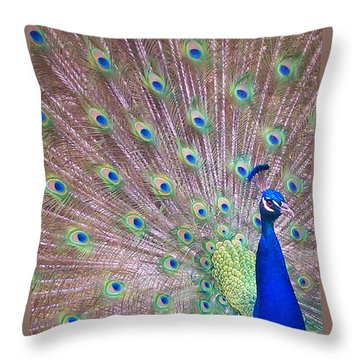 Vain Throw Pillow