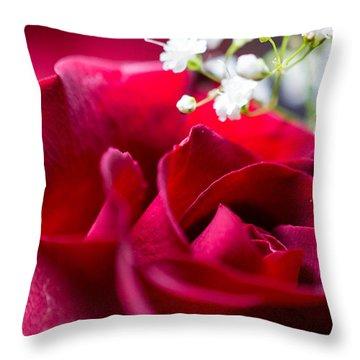 Valentine Throw Pillow by Alex Lapidus