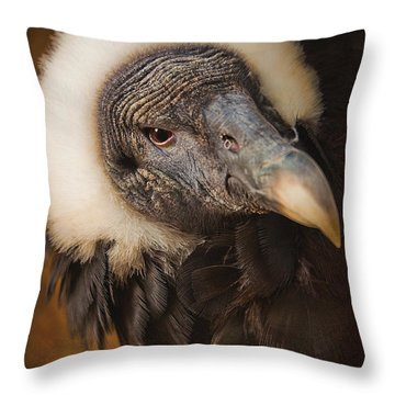 Vallerie Throw Pillow