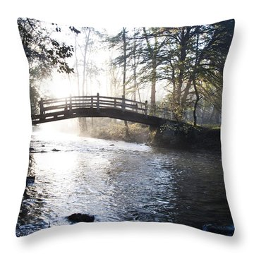 Valley Creek Bow Bridge At Valley Forge Throw Pillow by Bill Cannon