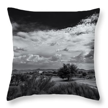 Valley Daydream Throw Pillow