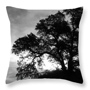 Valley Oak Throw Pillow