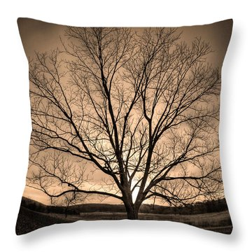 Valley Of Promise Throw Pillow by Mark Six