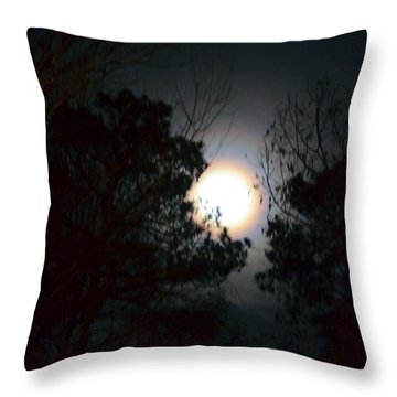 Valley Of The Moon Throw Pillow by Maria Urso