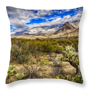 Throw Pillow featuring the photograph Valley View 27 by Mark Myhaver