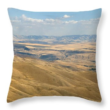 Throw Pillow featuring the photograph Valley View by Mark Greenberg