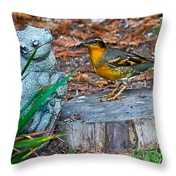 Vared Thursh Throw Pillow by Brian Williamson