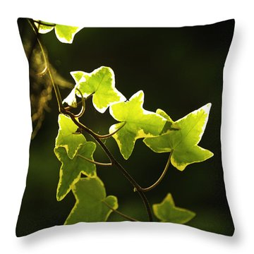 Variegated Vine Throw Pillow
