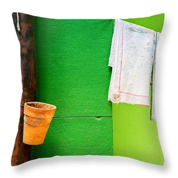 Vase Towels And Green Wall Throw Pillow by Silvia Ganora