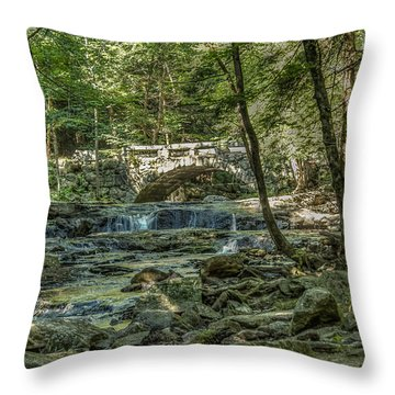 Throw Pillow featuring the photograph Vaughan Woods Bridge by Jane Luxton
