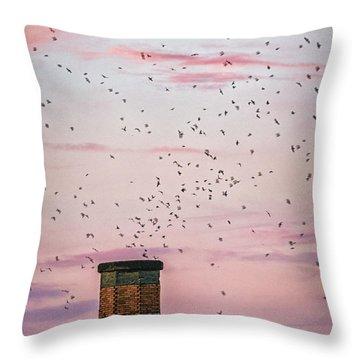 Chimney Swift Throw Pillows
