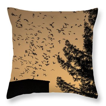 Vaux's Swifts In Migration Throw Pillow by Garry Gay