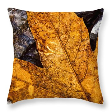 Veins Throw Pillow by Anthony Citro
