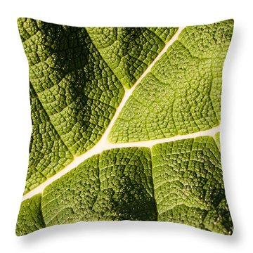 Veins Of A Leaf Throw Pillow