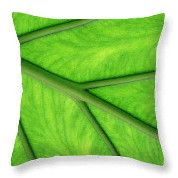 Throw Pillow featuring the photograph Veins Of Life by Judy Whitton
