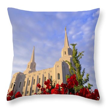 Velvet Throw Pillow by Chad Dutson