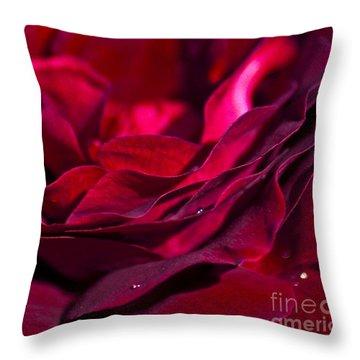 Velvet Red Rose Throw Pillow by Jan Bickerton