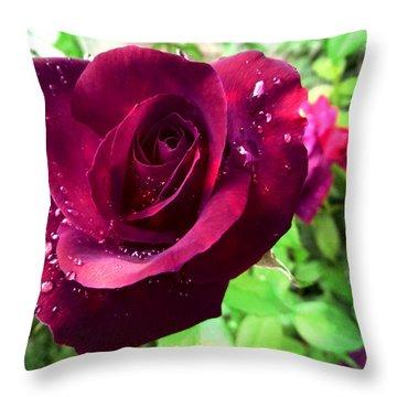 Velvet Shimmer Throw Pillow by Shawna Rowe