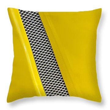 Vented Throw Pillow by Linda Bianic