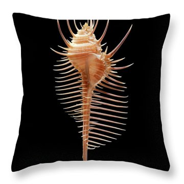 Zoological Throw Pillows