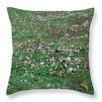 Verano Throw Pillow