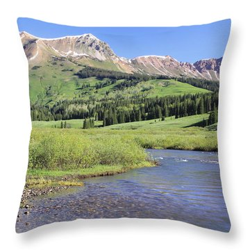 Verdant Valley Throw Pillow by Eric Glaser