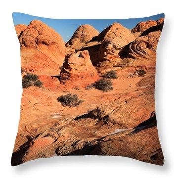 Vermilion Landscape Throw Pillow