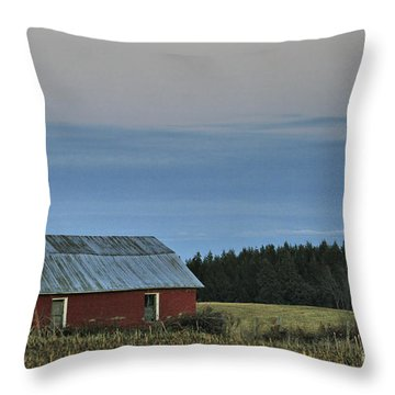 Vermont Full Moon Throw Pillow by Deborah Benoit