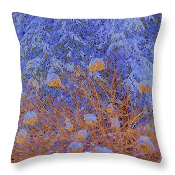 Throw Pillow featuring the photograph Vermont Snow by Tom Singleton
