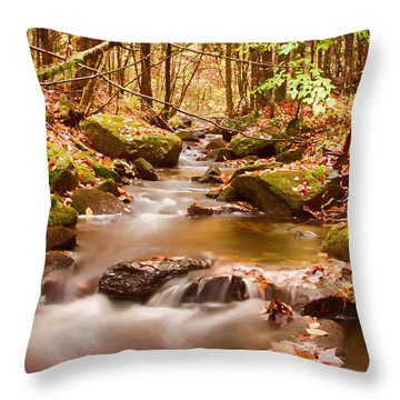 Throw Pillow featuring the photograph Vermont Stream by Jeff Folger