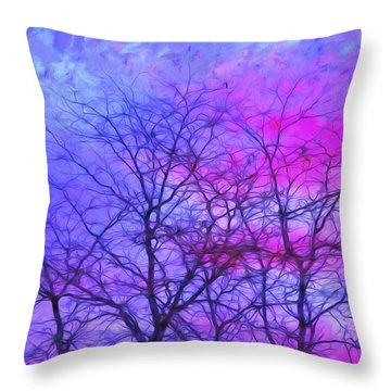 Throw Pillow featuring the photograph Vermont Sunrise by Tom Singleton