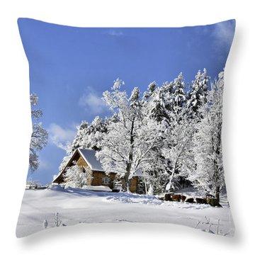 Vermont Winter Beauty Throw Pillow
